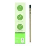 Cadeau d'affaire Crayon Sprout™