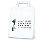 Cadeau d'affaire Sac boutique Papershop L - Promo